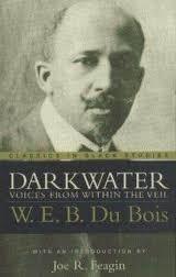 dubois essay w.e.b